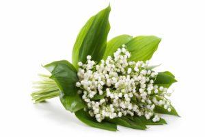 Le Butylphenyl Methylpropional, parfum ou poison ?