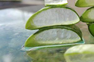 Faire son gel d'aloe vera à la maison, est-ce facile et sans danger