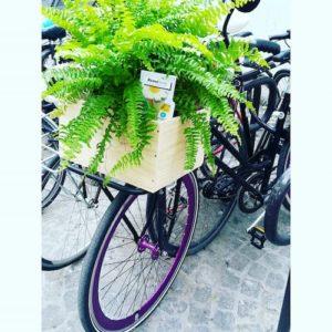 Livraison des produits cosmétiques RemèTerre à vélo