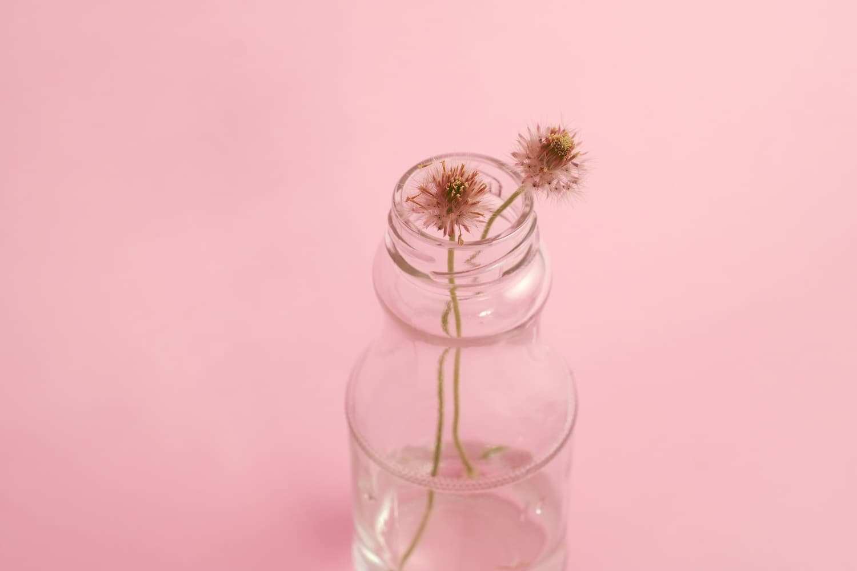 La place de l'hydrolat dans le label cosmétique bio Ecocert