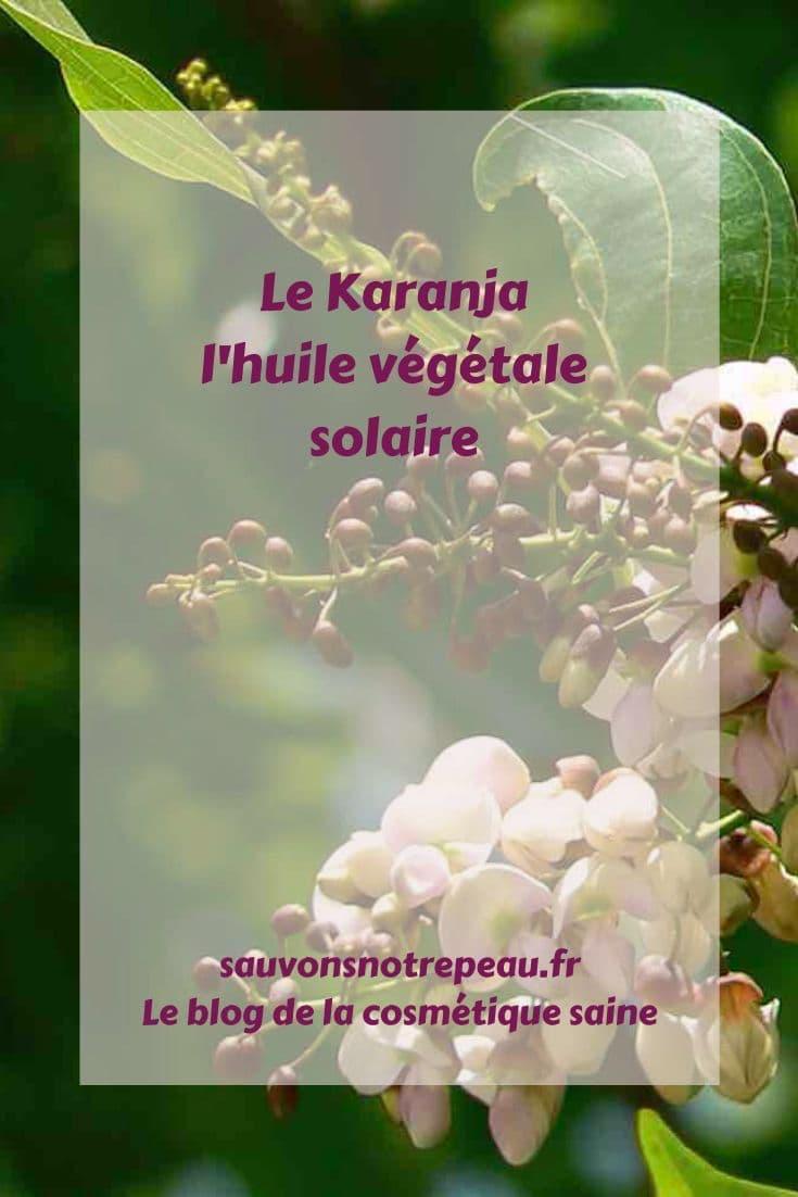 Découvrez le Karanja, l'huile végétale solaire