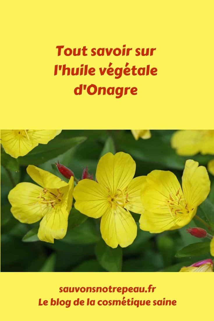 Tout savoir sur l'huile végétale d'Onagre