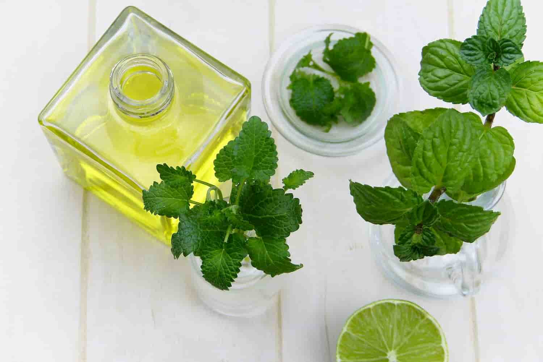 Les propriétés thérapeutiques des hydrolats pour les utiliser au quotidien
