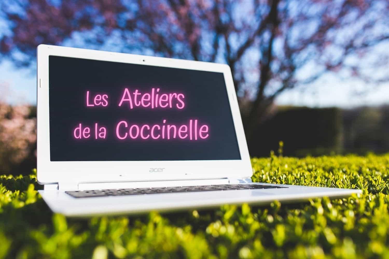 Les ateliers cosmétiques en ligne de la Coccinelle
